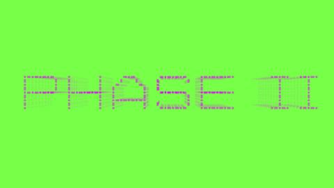 ... PHASE II ...